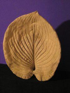 Leaf; Concrete - SOLD