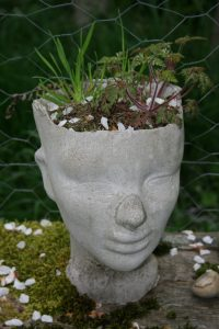 Planter Head with Funny Nose - SOLD